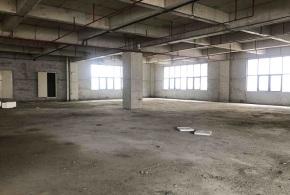 黄埔纳金科技产业园H6/7出租9层厂房