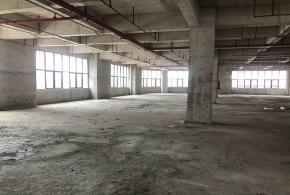 黄埔核心区纳金科技产业园H6/7出租5层厂房