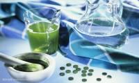 海藻饮品生产建设融资项目